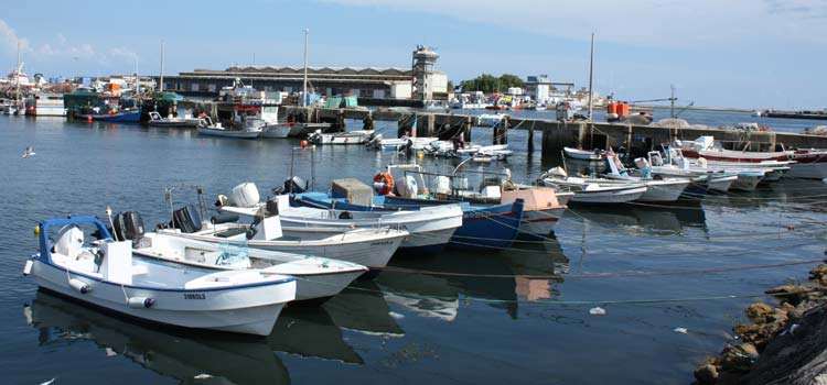 Olhao fishing port